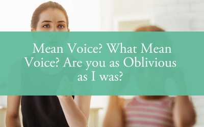 Mean Voice? What Mean Voice? Are you as Oblivious as I was? How to Ensure Your Parenting Style Doesn't Negatively Impact Your Child's Self-Esteem