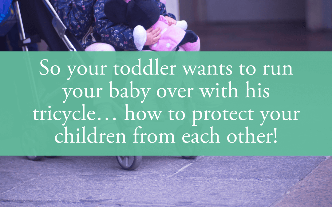 So your toddler wants to run your baby over with his tricycle… how to protect your children from each other!